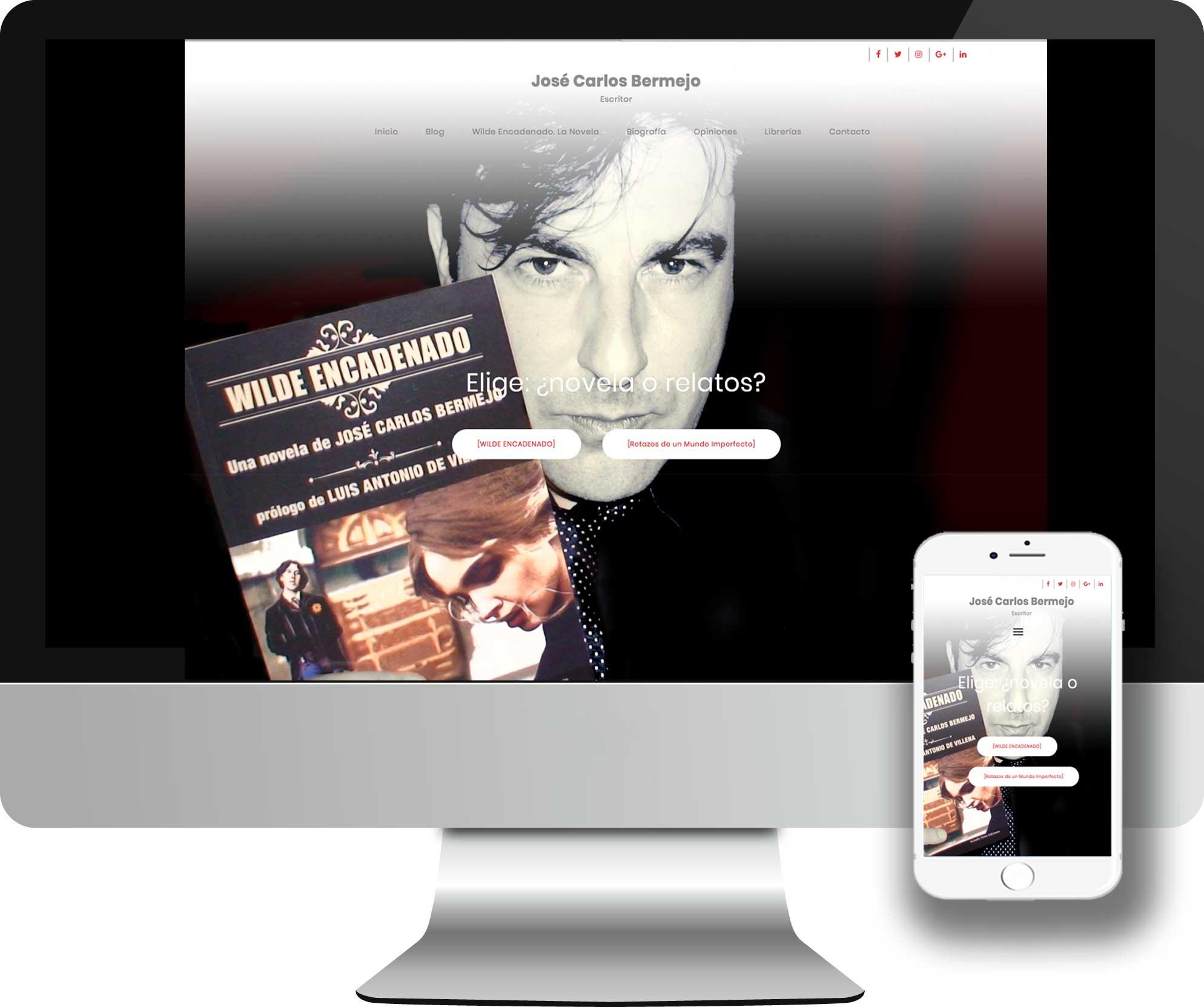 Desarrollo en WordPress para el desarrollo de la Web oficial de José Carlos Bermejo. Escritor