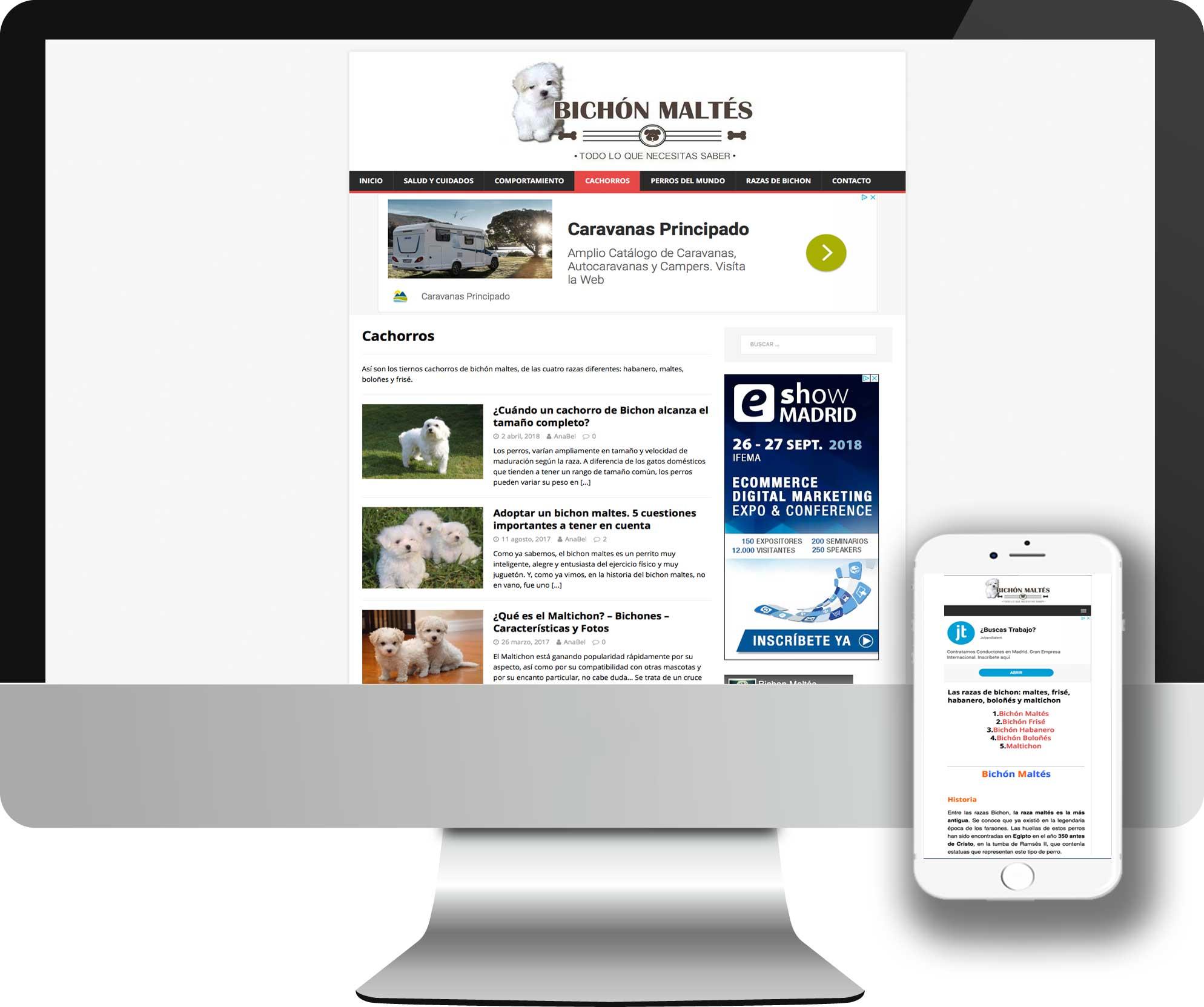Blog desarrollado en Joomla! para el portal Web sobre el Bichón Maltés